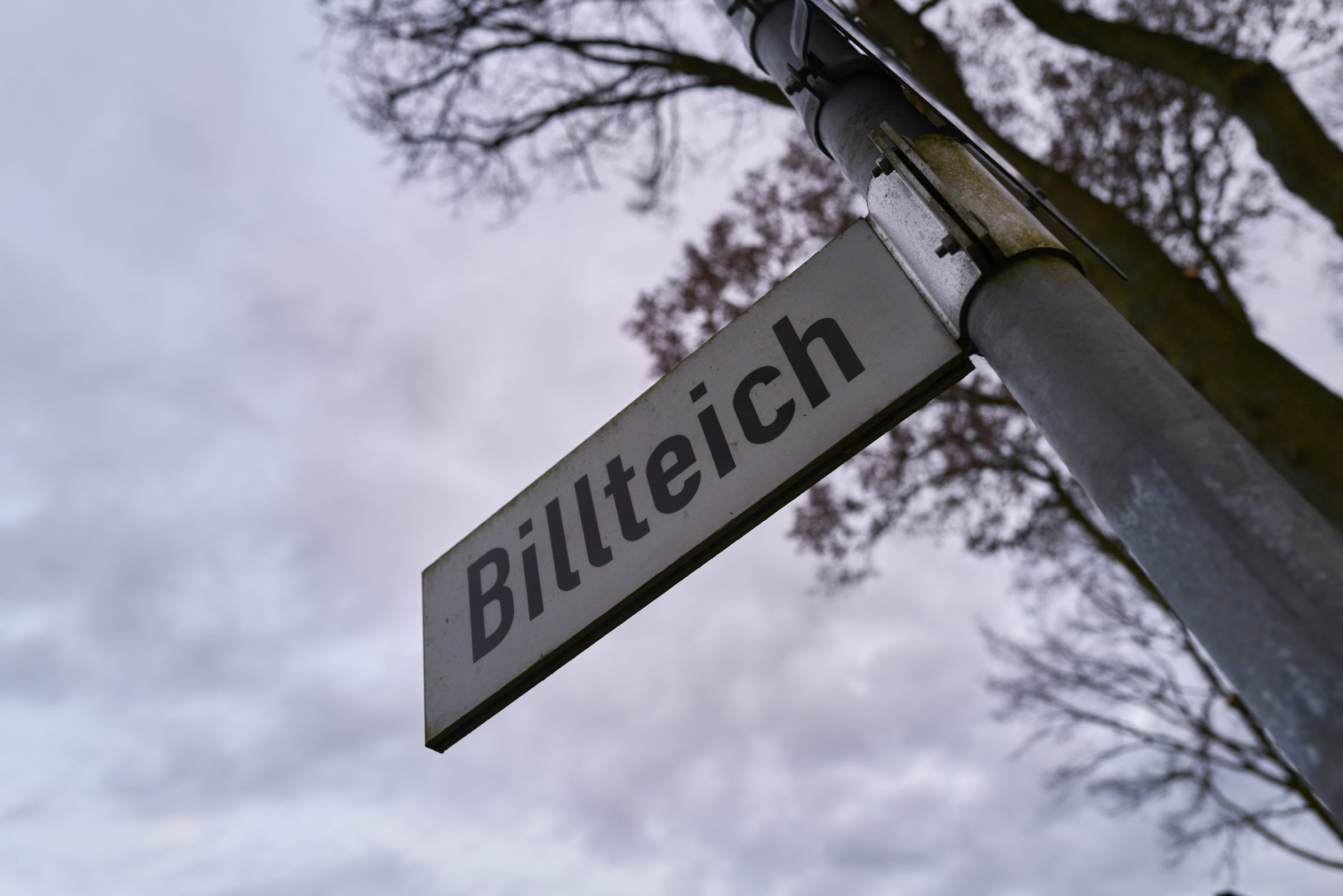 Billteich_2