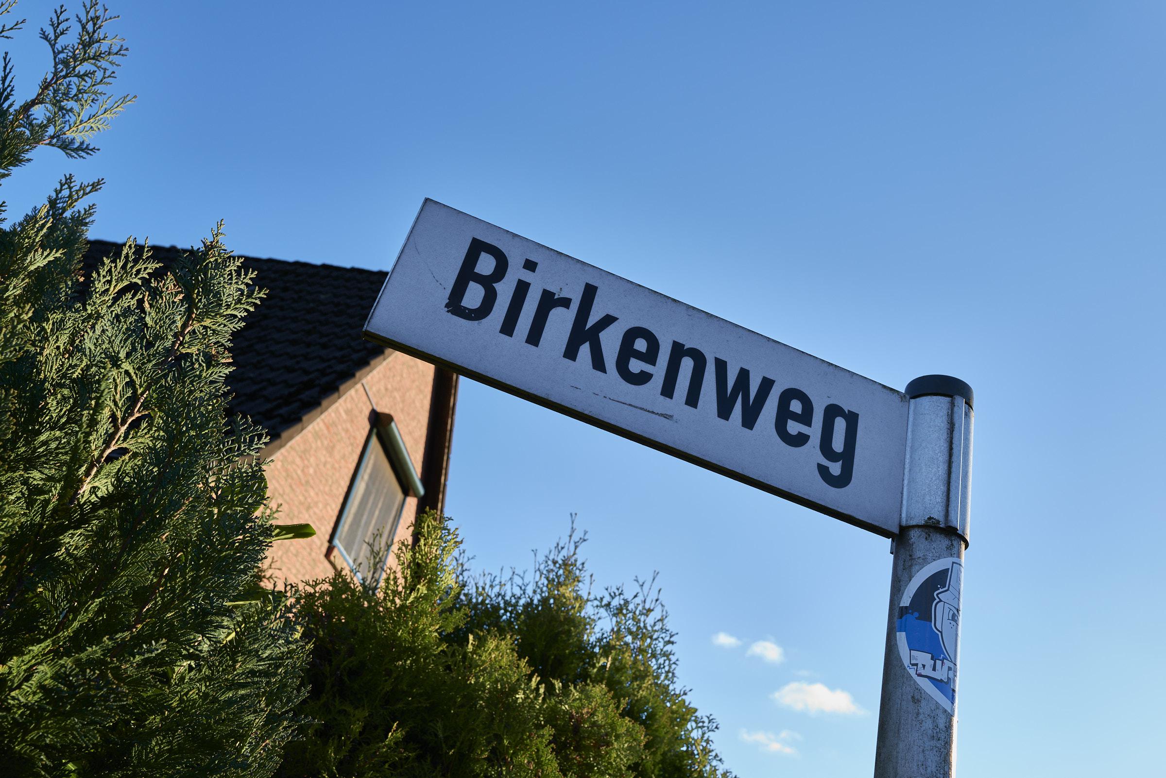 Birkenweg_2