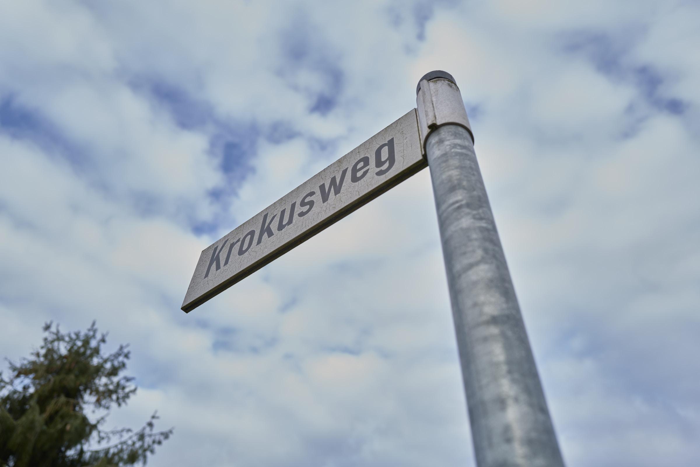 Krokusweg_2