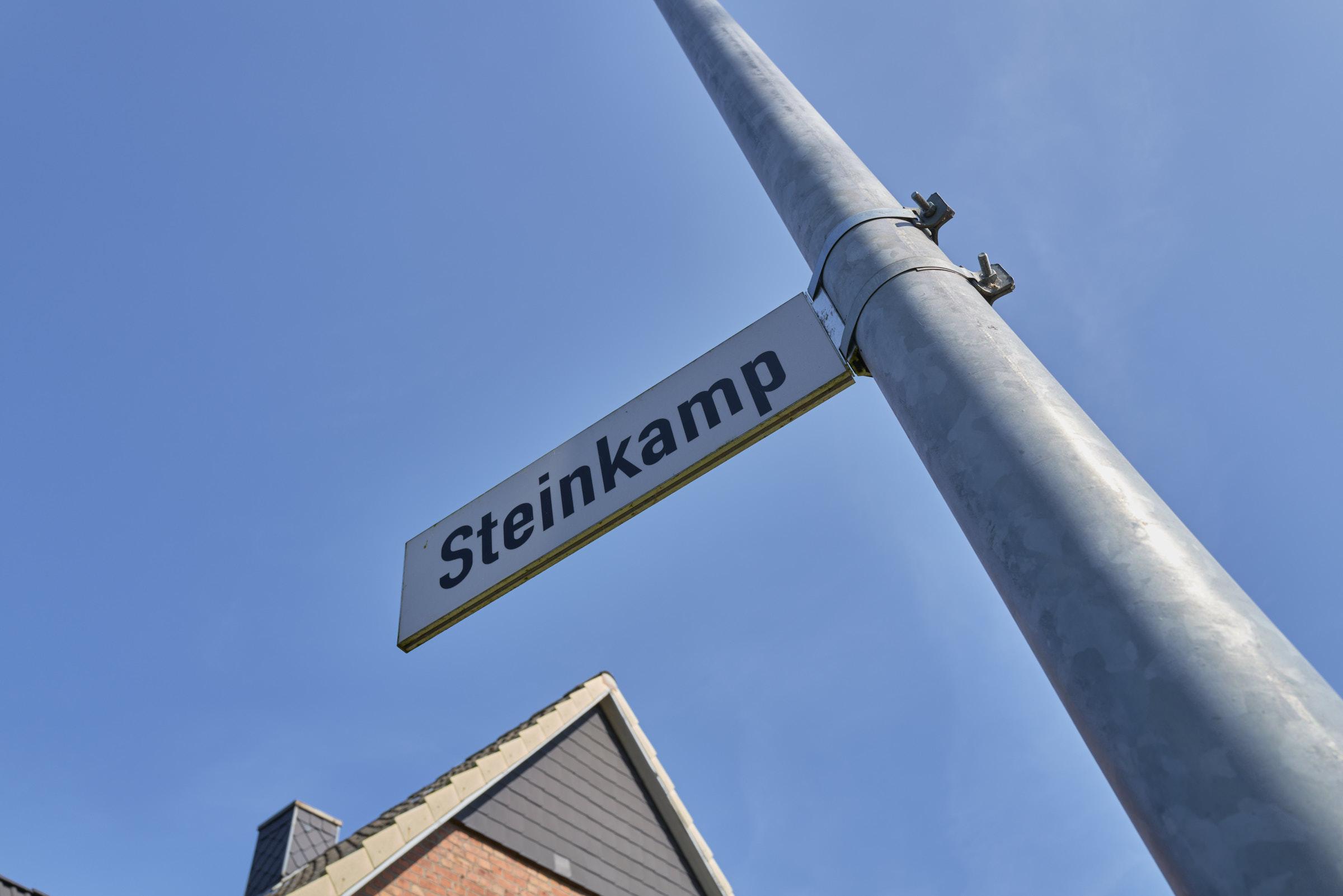 Steinkamp_2
