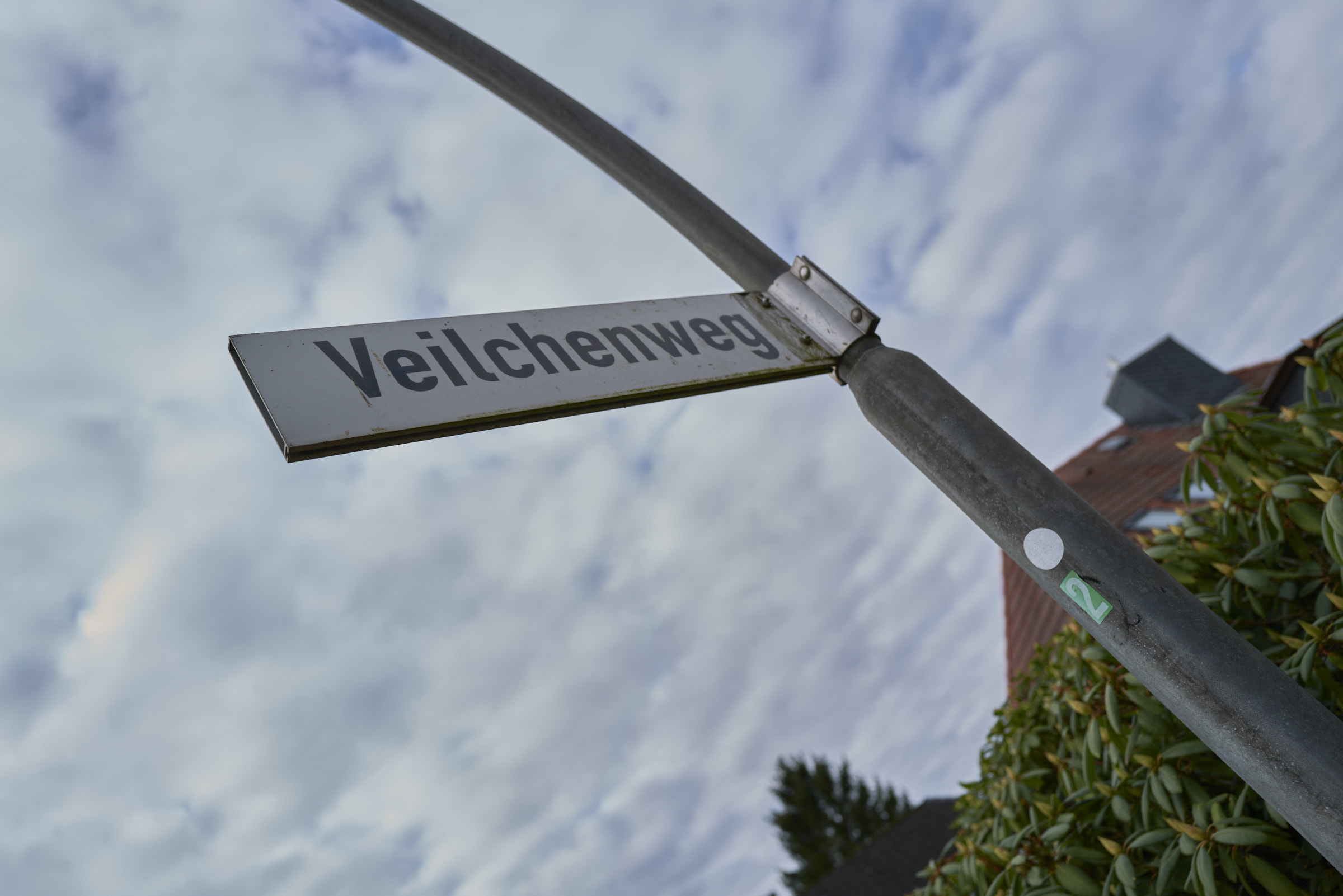 Veilchenweg_2