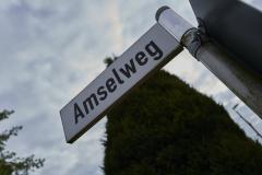 Amselweg_2