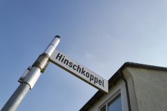 Hinschkoppel_2