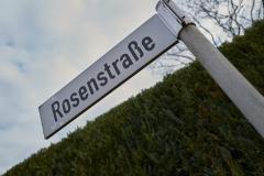Rosenstr_2