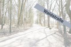Waldstr_2