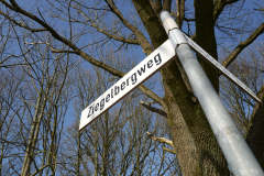 Ziegelbergweg_2